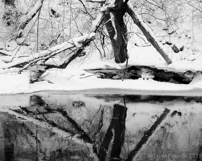 Root River Reflection 2/8/13